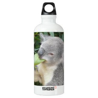 Koala Eating Gum Leaf Water Bottle