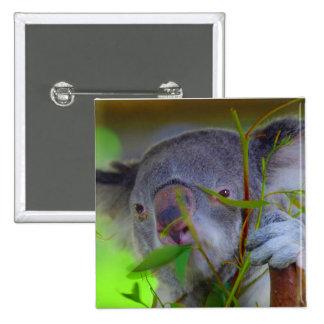 Koala Eating Pin