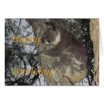 Koala hugging Tree Birthday Card