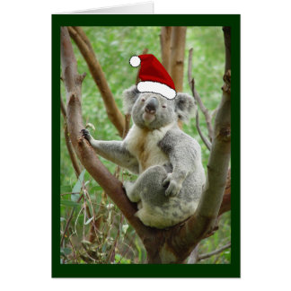 Koala in Santa Hat Photo Christmas Card
