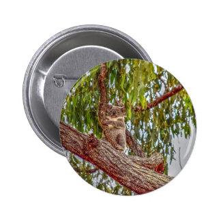 KOALA IN TREE AUSTRALIA ART EFFECTS 6 CM ROUND BADGE