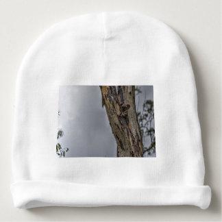 KOALA IN TREE AUSTRALIA ART EFFECTS BABY BEANIE