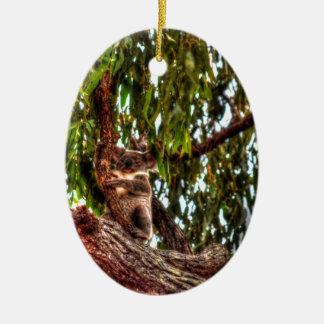 KOALA IN TREE AUSTRALIA ART EFFECTS CERAMIC ORNAMENT