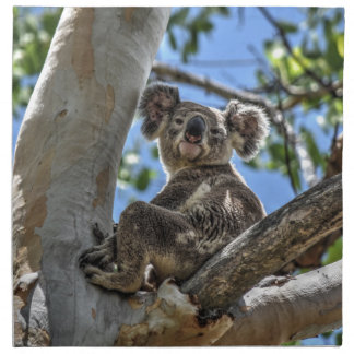 KOALA IN TREE AUSTRALIA ART EFFECTS NAPKIN