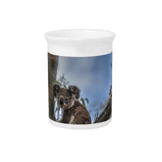 KOALA IN TREE AUSTRALIA ART EFFECTS PITCHER