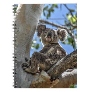 KOALA IN TREE AUSTRALIA ART EFFECTS SPIRAL NOTEBOOK