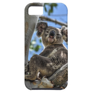 KOALA IN TREE AUSTRALIA ART EFFECTS TOUGH iPhone 5 CASE