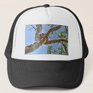 KOALA IN TREE AUSTRALIA ART EFFECTS TRUCKER HAT