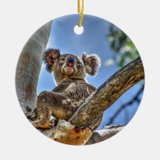 KOALA IN TREE AUSTRALIA WITH ART EFFECTS CERAMIC ORNAMENT