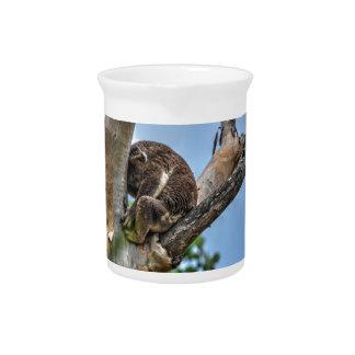 KOALA IN TREE AUSTRALIA WITH ART EFFECTS PITCHER
