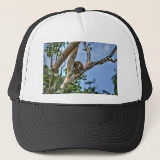 KOALA IN TREE AUSTRALIA WITH ART EFFECTS TRUCKER HAT