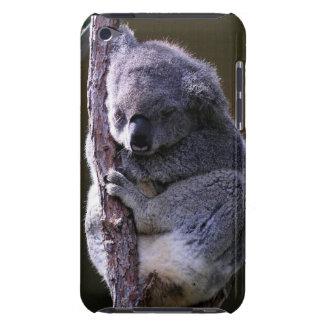 Koala in Tree iTouch Case