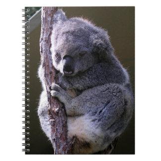 Koala in Tree Notebook