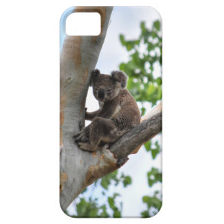 KOALA IN TREE QUEENSLAND AUSTRALIA BARELY THERE iPhone 5 CASE