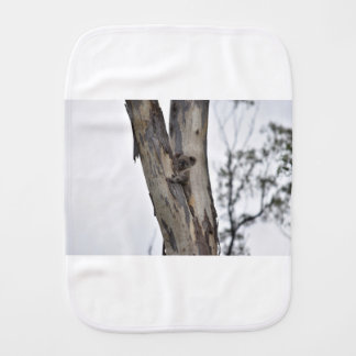 KOALA IN TREE QUEENSLAND AUSTRALIA BURP CLOTH