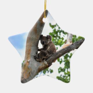 KOALA IN TREE QUEENSLAND AUSTRALIA CERAMIC ORNAMENT