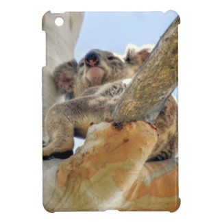 KOALA IN TREE QUEENSLAND AUSTRALIA COVER FOR THE iPad MINI