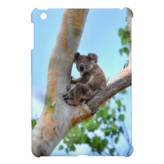 KOALA IN TREE QUEENSLAND AUSTRALIA iPad MINI COVER