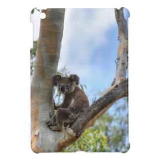 KOALA IN TREE QUEENSLAND AUSTRALIA iPad MINI COVERS