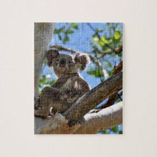 KOALA IN TREE QUEENSLAND AUSTRALIA JIGSAW PUZZLE