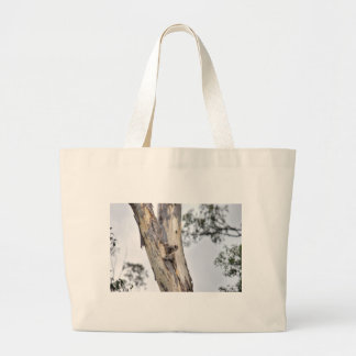 KOALA IN TREE QUEENSLAND AUSTRALIA LARGE TOTE BAG