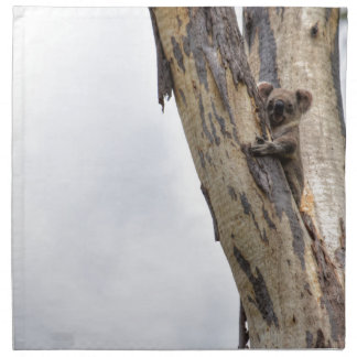KOALA IN TREE QUEENSLAND AUSTRALIA NAPKIN