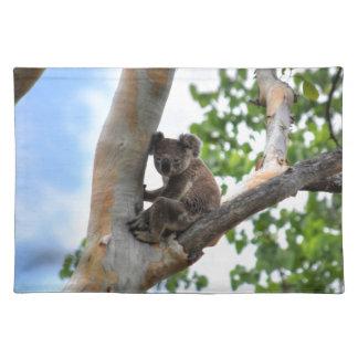 KOALA IN TREE QUEENSLAND AUSTRALIA PLACE MATS