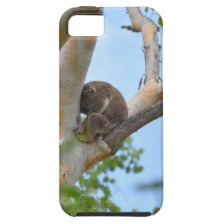 KOALA IN TREE QUEENSLAND AUSTRALIA TOUGH iPhone 5 CASE