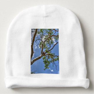 KOALA IN TREE RURAL QUEENSLAND AUSTRALIA BABY BEANIE