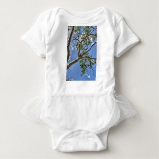 KOALA IN TREE RURAL QUEENSLAND AUSTRALIA BABY BODYSUIT