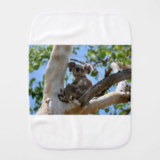 KOALA IN TREE RURAL QUEENSLAND AUSTRALIA BURP CLOTH