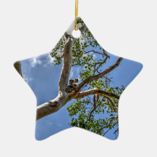 KOALA IN TREE RURAL QUEENSLAND AUSTRALIA CERAMIC STAR DECORATION