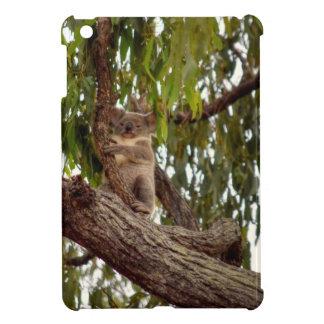 KOALA IN TREE RURAL QUEENSLAND AUSTRALIA iPad MINI COVERS