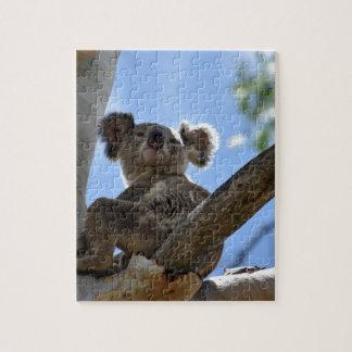 KOALA IN TREE RURAL QUEENSLAND AUSTRALIA JIGSAW PUZZLE