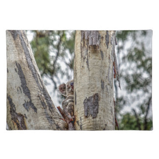 KOALA IN TREE RURAL QUEENSLAND AUSTRALIA PLACE MAT