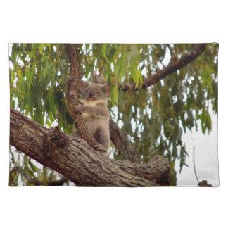 KOALA IN TREE RURAL QUEENSLAND AUSTRALIA PLACE MATS