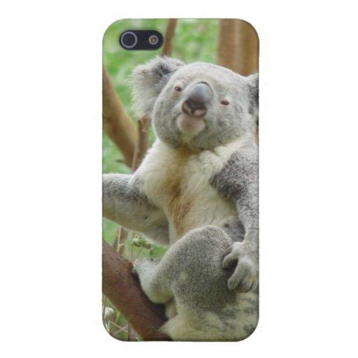 Koala Case For iPhone 5