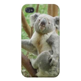 Koala iPhone 4 Cover