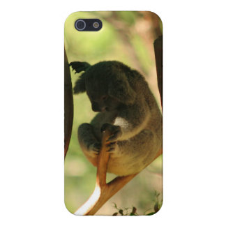 Koala Covers For iPhone 5