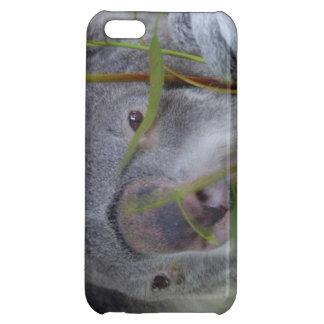 Koala Case For iPhone 5C