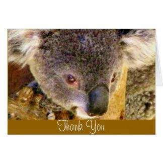 Koala Love_ Card