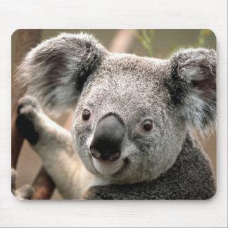 Koala Mouse Pad