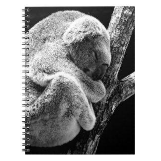 koala notebooks