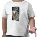 Koala, Phascolarctos cinereus), Australia, Shirt