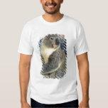 Koala, Phascolarctos cinereus), Australia, Tee Shirt