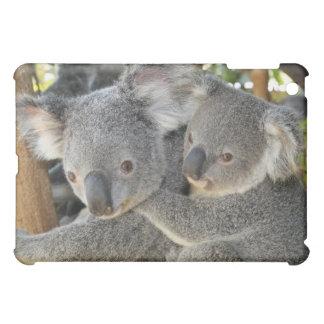Koala Phascolarctos cinereus Queensland . iPad Mini Cases