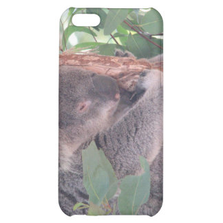 Koala Photo iPhone Case Cover For iPhone 5C