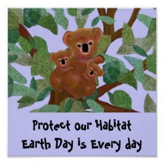 Koala protect our habitat Poster