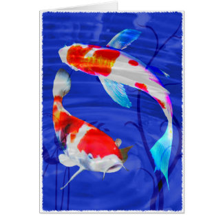Kohaku Duo in Deep Blue Pond Greeting Card