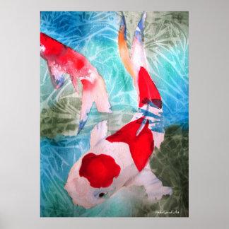 Kohaku Koi II fish watercolor original art Poster